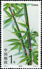 Tea Shaft Bamboo