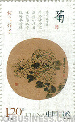 Ju ( Chrysanthemum )